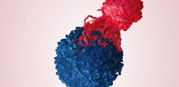 Immunotherapy: shadowing a clinical trial