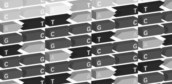 Les réseaux de gènes pour décrypter les maladies complexes