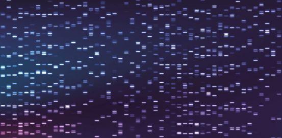 Analyse du génome: se poser les bonnes questions
